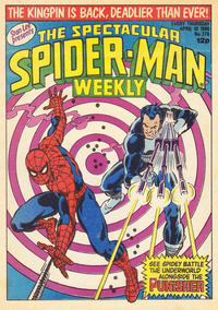 Cover Thumbnail for The Spectacular Spider-Man Weekly (Marvel UK, 1979 series) #370