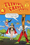 Cover Thumbnail for Flaming Carrot Comics (1985 series) #15 [Priced edition]