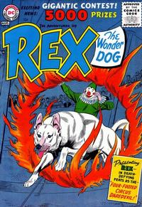 Cover Thumbnail for The Adventures of Rex the Wonder Dog (DC, 1952 series) #28