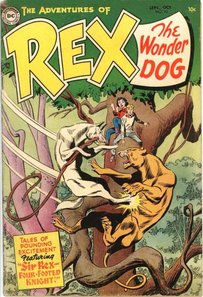 Cover for The Adventures of Rex the Wonder Dog (DC, 1952 series) #17