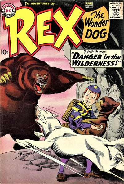 Cover for The Adventures of Rex the Wonder Dog (DC, 1952 series) #45