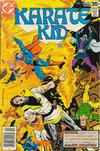 Cover for Karate Kid (DC, 1976 series) #13