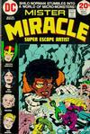 Cover for Mister Miracle (DC, 1971 series) #16
