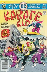 Cover Thumbnail for Karate Kid (DC, 1976 series) #2