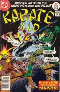 Cover Thumbnail for Karate Kid (DC, 1976 series) #8