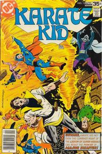 Cover Thumbnail for Karate Kid (DC, 1976 series) #13
