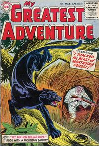 Cover Thumbnail for My Greatest Adventure (DC, 1955 series) #2