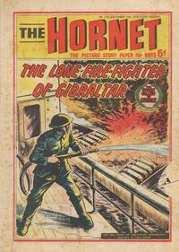 Cover Thumbnail for The Hornet (D.C. Thomson, 1963 series) #379