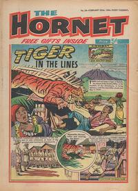 Cover Thumbnail for The Hornet (D.C. Thomson, 1963 series) #24