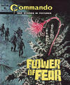 Cover for Commando (D.C. Thomson, 1961 series) #1166