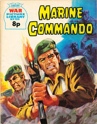 Cover Thumbnail for War Picture Library (IPC, 1958 series) #1036