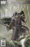 Cover Thumbnail for Dungeons & Dragons: The Legend of Drizzt: Neverwinter Tales (2011 series) #1 [Newsstand]