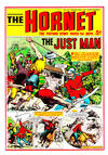 Cover for The Hornet (D.C. Thomson, 1963 series) #207