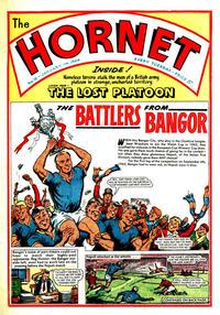 Cover Thumbnail for The Hornet (D.C. Thomson, 1963 series) #18