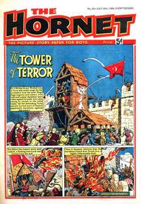 Cover Thumbnail for The Hornet (D.C. Thomson, 1963 series) #45