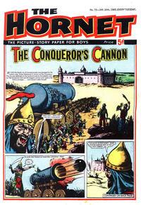 Cover Thumbnail for The Hornet (D.C. Thomson, 1963 series) #73