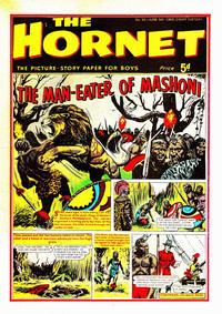 Cover Thumbnail for The Hornet (D.C. Thomson, 1963 series) #91