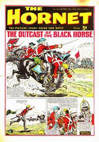Cover Thumbnail for The Hornet (D.C. Thomson, 1963 series) #110