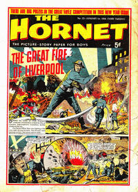 Cover Thumbnail for The Hornet (D.C. Thomson, 1963 series) #121