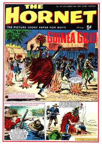Cover Thumbnail for The Hornet (D.C. Thomson, 1963 series) #119