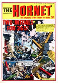 Cover Thumbnail for The Hornet (D.C. Thomson, 1963 series) #174