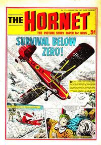Cover Thumbnail for The Hornet (D.C. Thomson, 1963 series) #175