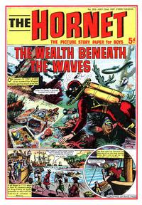 Cover Thumbnail for The Hornet (D.C. Thomson, 1963 series) #202