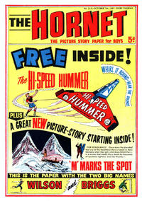 Cover Thumbnail for The Hornet (D.C. Thomson, 1963 series) #213