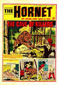 Cover Thumbnail for The Hornet (D.C. Thomson, 1963 series) #220