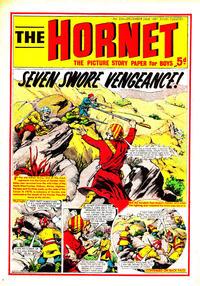 Cover Thumbnail for The Hornet (D.C. Thomson, 1963 series) #224