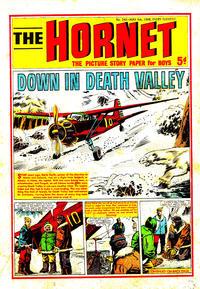 Cover Thumbnail for The Hornet (D.C. Thomson, 1963 series) #243