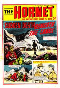 Cover Thumbnail for The Hornet (D.C. Thomson, 1963 series) #248