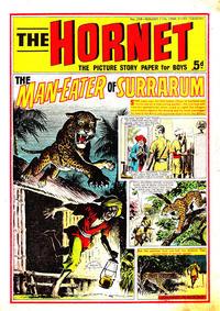 Cover Thumbnail for The Hornet (D.C. Thomson, 1963 series) #258