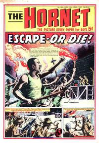 Cover Thumbnail for The Hornet (D.C. Thomson, 1963 series) #293