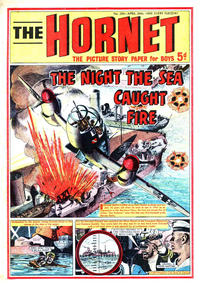 Cover Thumbnail for The Hornet (D.C. Thomson, 1963 series) #294