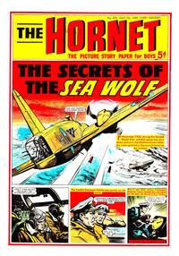 Cover Thumbnail for The Hornet (D.C. Thomson, 1963 series) #304