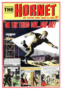 Cover Thumbnail for The Hornet (D.C. Thomson, 1963 series) #307