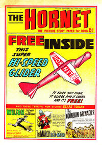 Cover Thumbnail for The Hornet (D.C. Thomson, 1963 series) #313