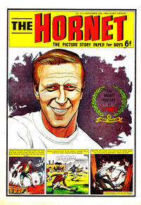 Cover Thumbnail for The Hornet (D.C. Thomson, 1963 series) #315