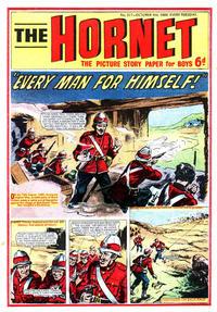 Cover Thumbnail for The Hornet (D.C. Thomson, 1963 series) #317
