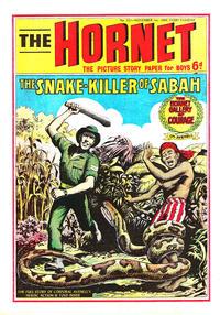 Cover Thumbnail for The Hornet (D.C. Thomson, 1963 series) #321