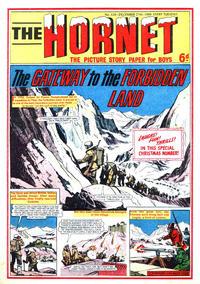 Cover Thumbnail for The Hornet (D.C. Thomson, 1963 series) #329