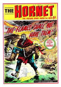 Cover Thumbnail for The Hornet (D.C. Thomson, 1963 series) #337