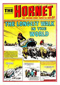 Cover Thumbnail for The Hornet (D.C. Thomson, 1963 series) #345