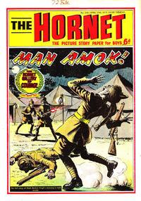 Cover Thumbnail for The Hornet (D.C. Thomson, 1963 series) #346