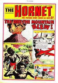 Cover Thumbnail for The Hornet (D.C. Thomson, 1963 series) #349