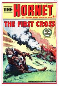 Cover Thumbnail for The Hornet (D.C. Thomson, 1963 series) #382