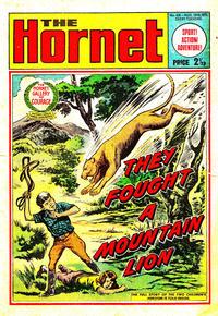 Cover Thumbnail for The Hornet (D.C. Thomson, 1963 series) #416
