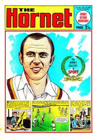 Cover Thumbnail for The Hornet (D.C. Thomson, 1963 series) #418
