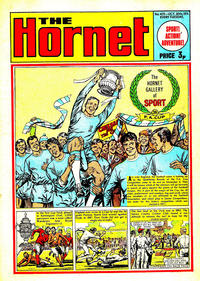 Cover Thumbnail for The Hornet (D.C. Thomson, 1963 series) #425
